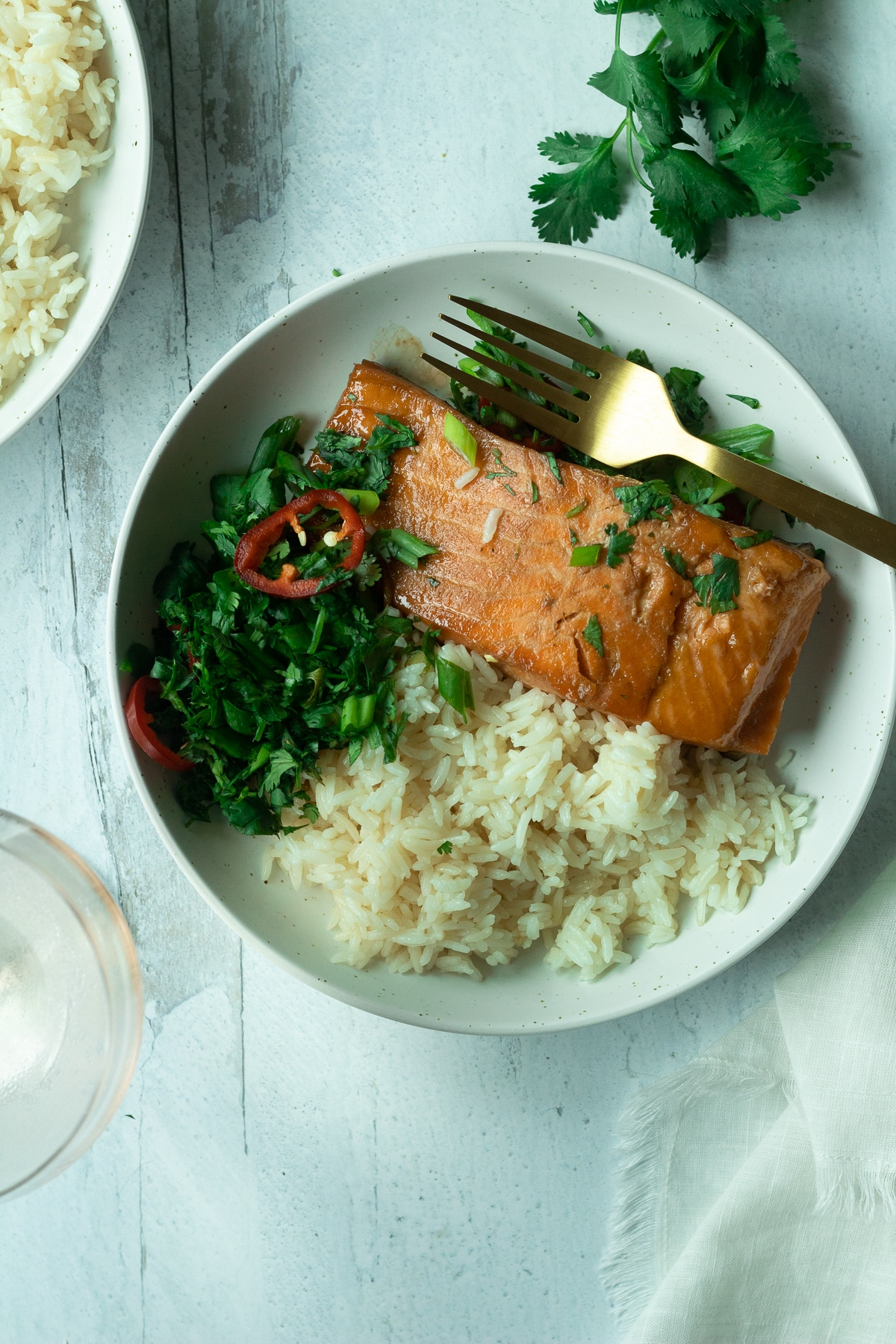 Salmon and rice on plate with herb chili mix with cilantro leaves around plate